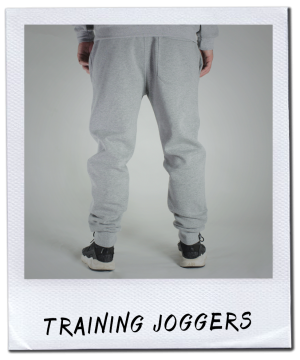 TRAINING JOGGERS GREY